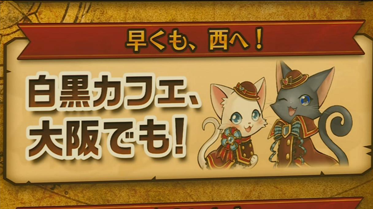 【白猫】ニコ生20162月22日_さいかわ猫決定戦201677
